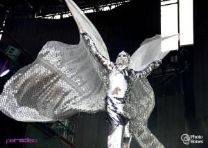 Silver Butterfly, Photo Bones, 2013
